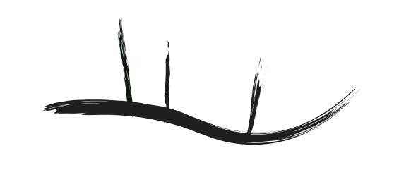 acupuntura Reus